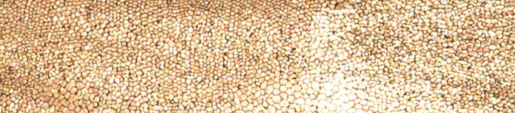 rosegolddivider